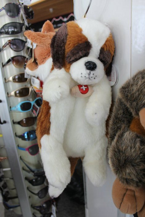 St.Bernard backpack. If I hadn't spent my money on Powerade, this is what it would have gone on.